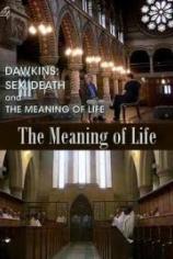 Секс, смерть и смысл жизни