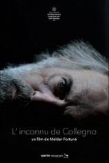 Незнакомец из Колленьо