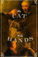 Кот с человеческими руками