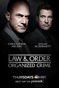 Сериал Закон и порядок: Организованная преступность смотреть онлайн бесплатно все серии