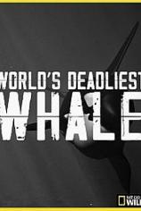 Nat Geo Wild: Самый смертоносный кит
