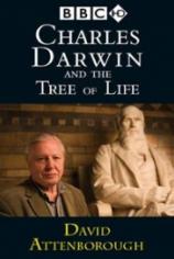 Чарльз Дарвин и Древо жизни