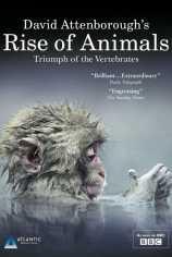 Восстание животных: Триумф позвоночных