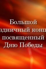 Большой праздничный концерт посвящённый Дню Победы (09.05.2021)