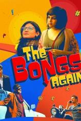 Бенгальцы снова