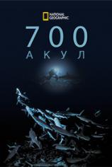 700 акул