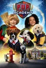 Щенячья академия
