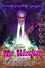 Загадочный Мистер Виздом