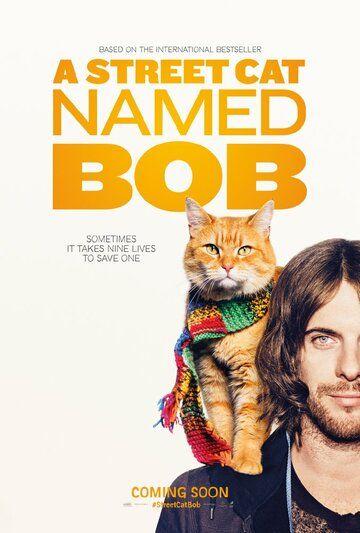 Уличный кот по кличке Боб 2016 смотреть онлайн бесплатно