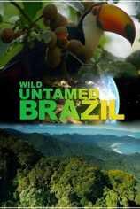 Дикая Бразилия