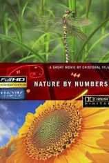 Природа в числах